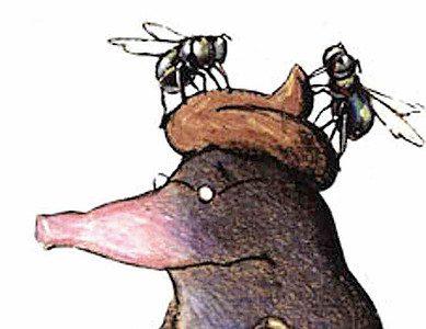 TIP! De Mol en de Gruffalo , binnenkort te zien in het theater!!!
